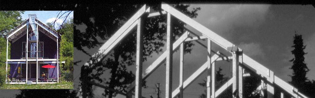 Skelettkonstruktion am Hang